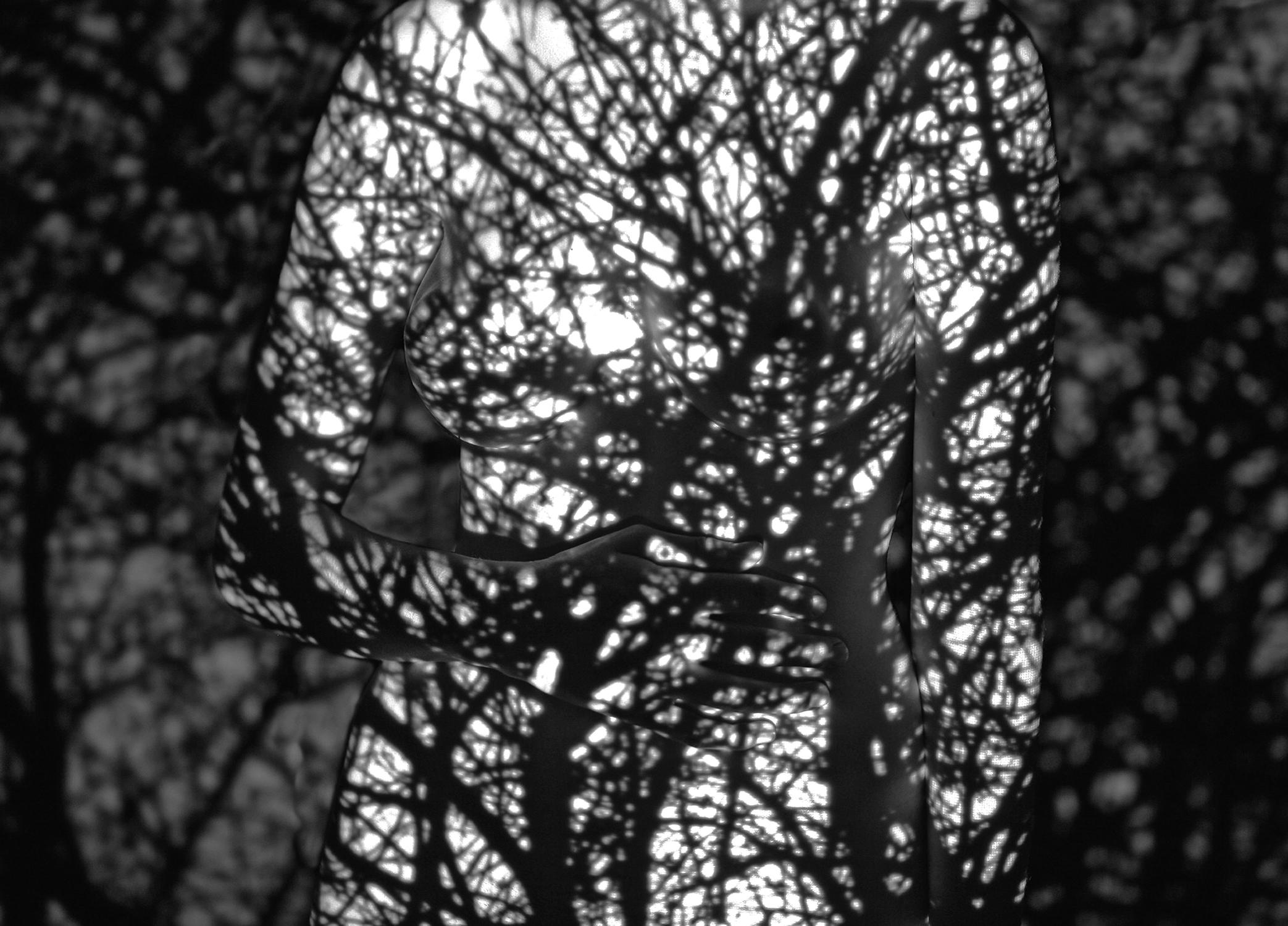 Phobia-VII-Thumbnail